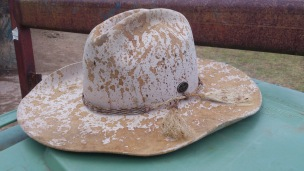 Molasses Accident, Australia