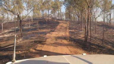 Bush Fire, Australia