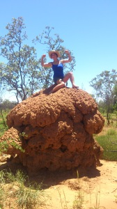 Conquering Termite Mounds