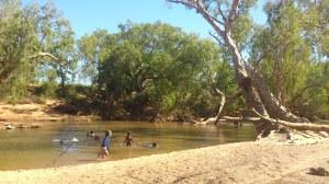 A Swim at Bohemia Downs