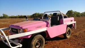 The Barbie Bull Buggy